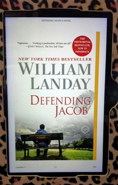 Defending Jacob on my Kindle Fire