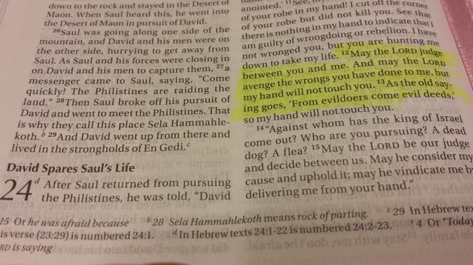 Scripture Sunday R n R 4.24.17